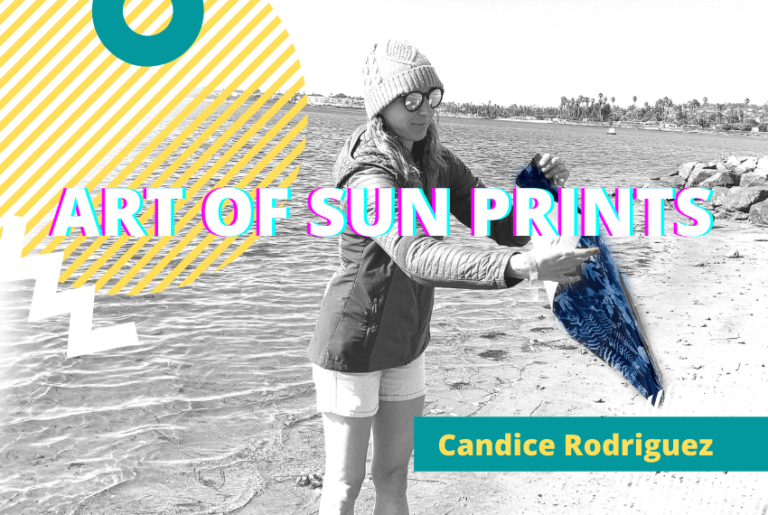 The Art of Making Sun Prints